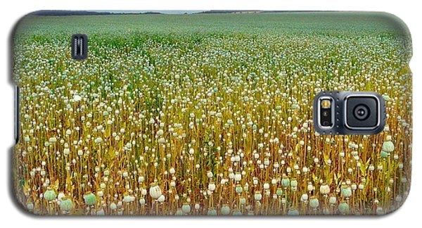 Galaxy S5 Case featuring the photograph Poppy Fields Forever by Rdr Creative