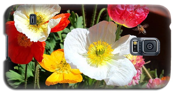 Galaxy S5 Case featuring the photograph Poppy Galore by M Diane Bonaparte