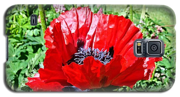 Galaxy S5 Case featuring the photograph Poppy by Nick Kloepping