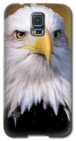 Portrait Of A Bald Eagle Galaxy S5 Case