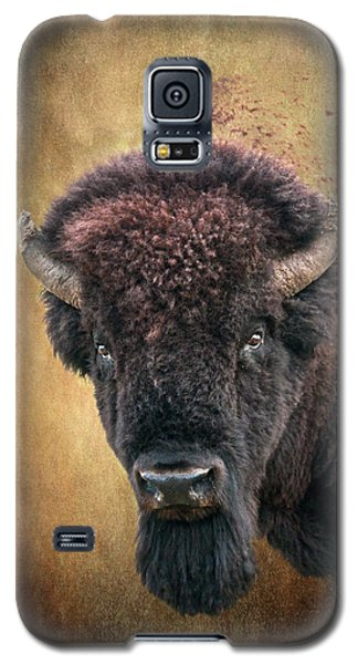 Portrait Of A Buffalo Galaxy S5 Case