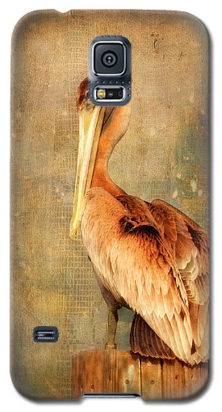 Portrait Of A Pelican Galaxy S5 Case