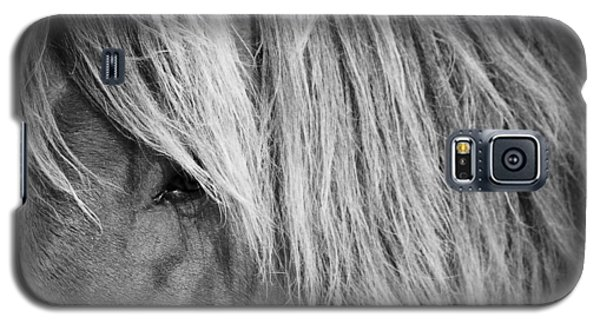 Portrait Of A Wild Horse Galaxy S5 Case by Bob Decker