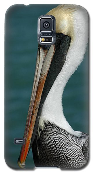 Galaxy S5 Case featuring the photograph Posing For The Tourists by Vivian Christopher