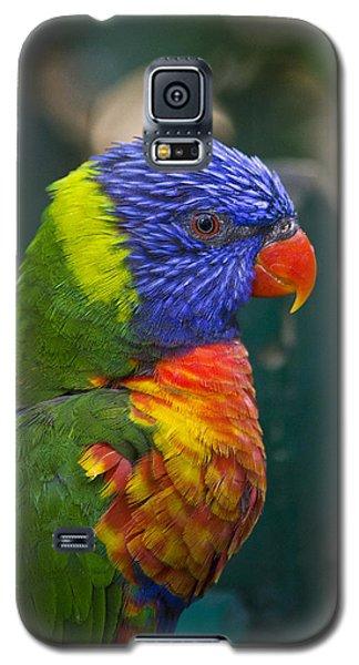Posing Rainbow Lorikeet. Galaxy S5 Case