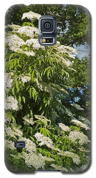Galaxy S5 Case featuring the photograph Potchen's Cascade by Joseph Yarbrough