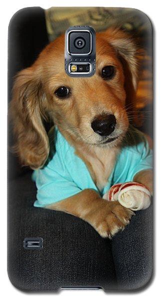 Precious Puppy Galaxy S5 Case