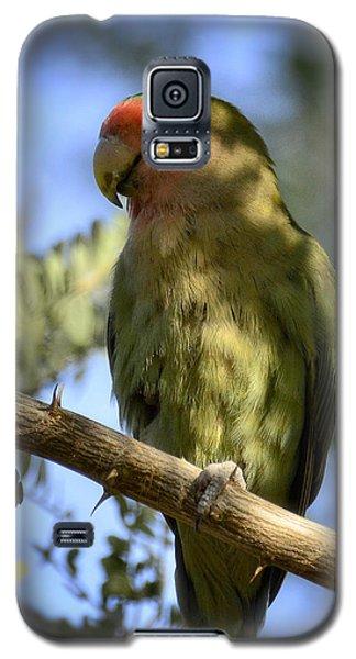 Pretty Bird Galaxy S5 Case by Saija  Lehtonen