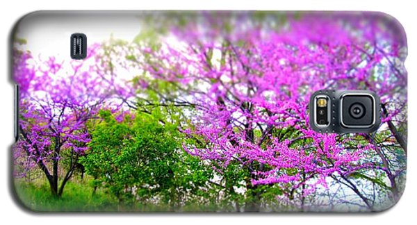 Galaxy S5 Case featuring the photograph Pretty In Pink Spring Blossoms by Danielle  Parent