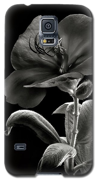 Princess Flower In Black And White Galaxy S5 Case