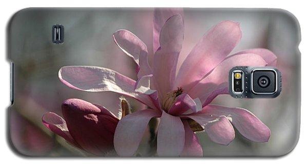 Pristine Pastels Galaxy S5 Case
