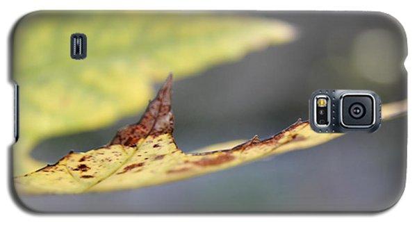 Profile Of A Leaf Galaxy S5 Case