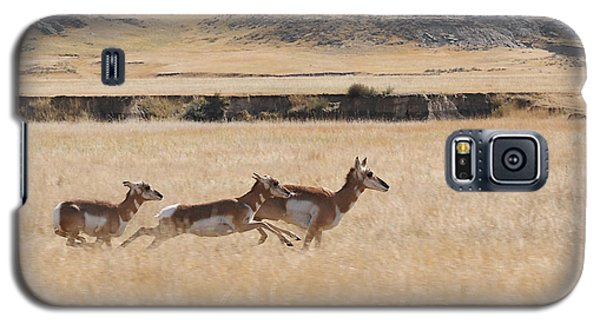 Galaxy S5 Case featuring the photograph Pronghorn Antelopes On The Run by Art Whitton