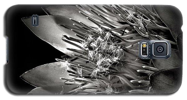 Protea In Black And White Galaxy S5 Case