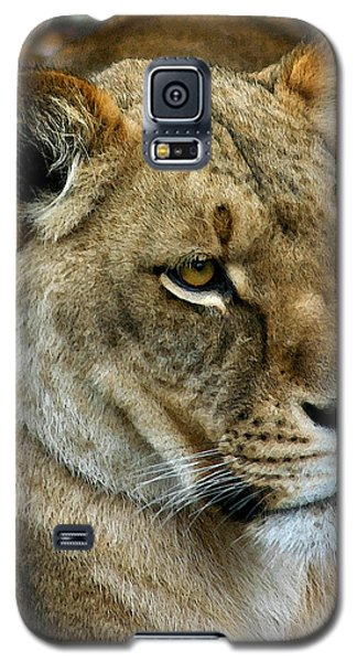 Proud Lioness Galaxy S5 Case by Cindy Haggerty