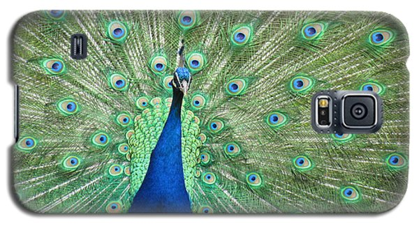 Galaxy S5 Case featuring the photograph Proud Peacock by Bonnie Muir