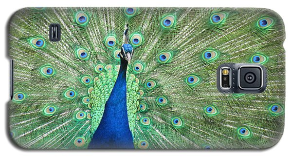 Proud Peacock Galaxy S5 Case by Bonnie Muir
