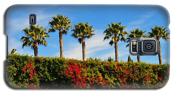 Pt. Dume Palms Galaxy S5 Case