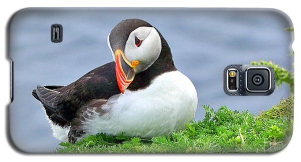 Galaxy S5 Case featuring the photograph Puffin by Lynn Bolt