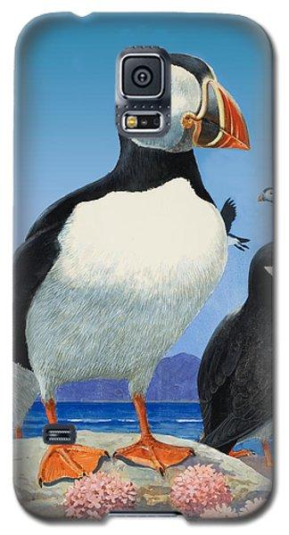 Puffins Galaxy S5 Case