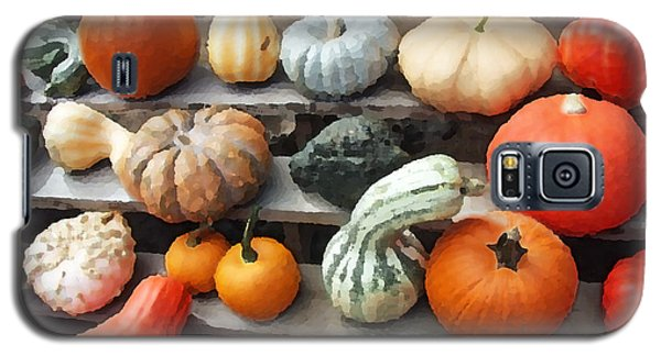 Galaxy S5 Case featuring the photograph Pumpkins And Gourds by Brooke T Ryan