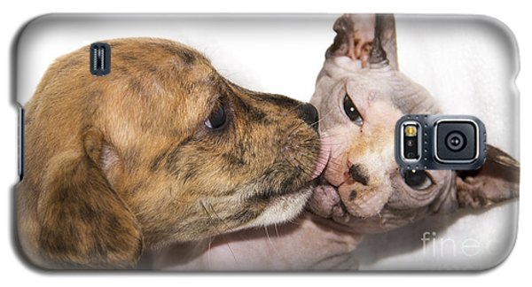 Puppy Kissing Alien Cat Galaxy S5 Case