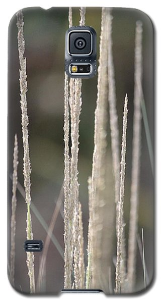Galaxy S5 Case featuring the photograph Pure by Amy Gallagher
