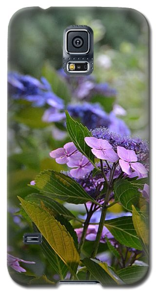 Purple And Green Galaxy S5 Case by Bonnie Myszka