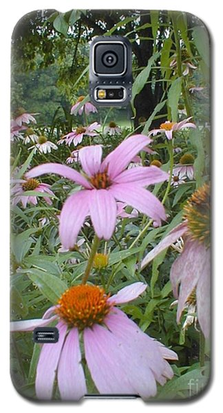 Galaxy S5 Case featuring the photograph Purple Coneflowers by Vonda Lawson-Rosa