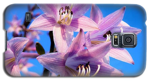 Galaxy S5 Case featuring the photograph Purple Hosta Blooms by Davandra Cribbie