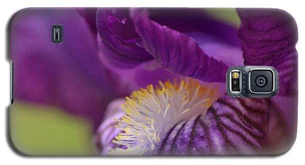 Purple Iris 1 Galaxy S5 Case