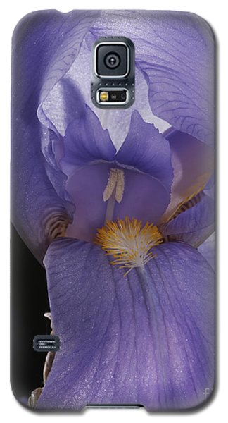Galaxy S5 Case featuring the photograph Purple Iris by Art Whitton