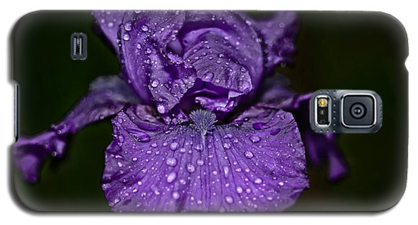 Purple Iris With Water Drops Galaxy S5 Case