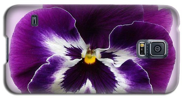 Purple Pansy Galaxy S5 Case