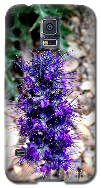 Purple Reign Galaxy S5 Case