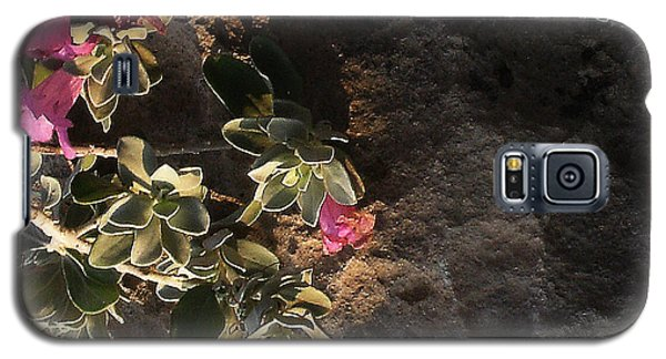 Galaxy S5 Case featuring the photograph Purple Sage And Desert Rock In Morning Light by Louis Nugent