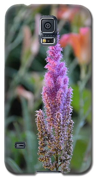 Purple Spear Galaxy S5 Case by Bonnie Myszka