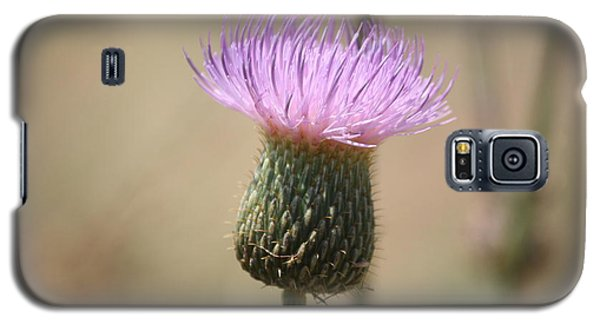 Galaxy S5 Case featuring the photograph Purple Thistle by Donna  Smith
