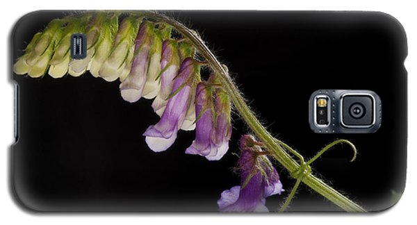 Galaxy S5 Case featuring the photograph Purple Vetch by Art Whitton