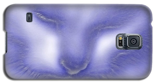 Digital Puss In Blue Galaxy S5 Case by Linsey Williams