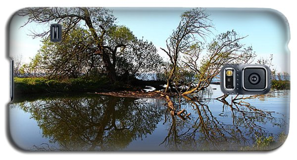 Galaxy S5 Case featuring the photograph Quiet Reflection by Davandra Cribbie
