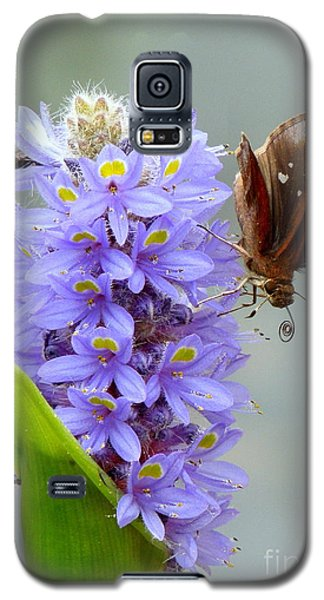 Quilling Butterfly Galaxy S5 Case