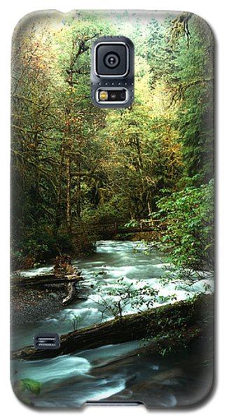 Quineault Rain Forest Galaxy S5 Case