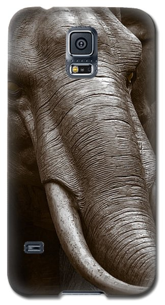 Raging Bull Galaxy S5 Case