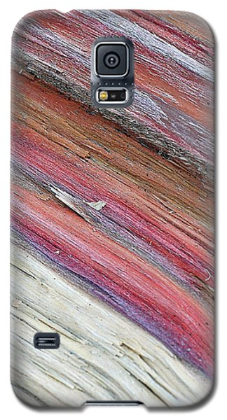 Galaxy S5 Case featuring the photograph Rainbow Wood by Lisa Phillips