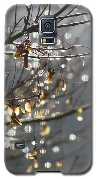 Galaxy S5 Case featuring the photograph Raindrops And Leaves by Katie Wing Vigil