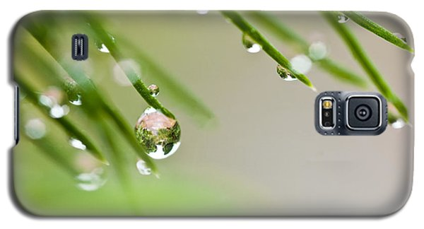 Raindrops On Needles Galaxy S5 Case by Trevor Chriss