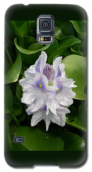Rare Hawain Water Lilly Galaxy S5 Case