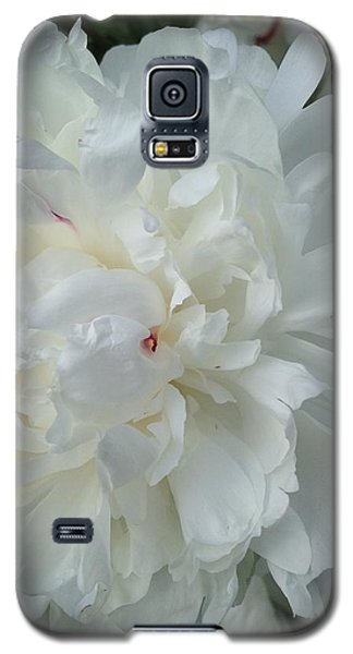 Rarely Perfect Galaxy S5 Case