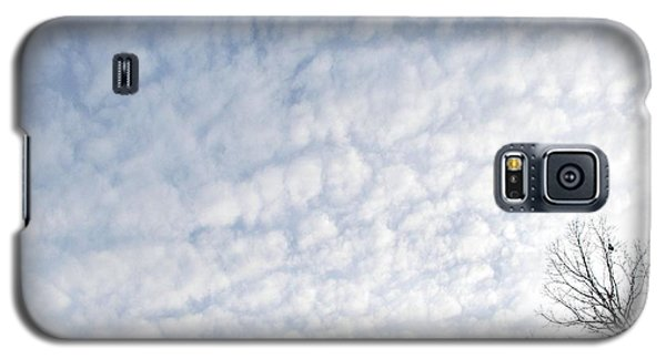 Galaxy S5 Case featuring the photograph Reaching The Clouds by Pamela Hyde Wilson
